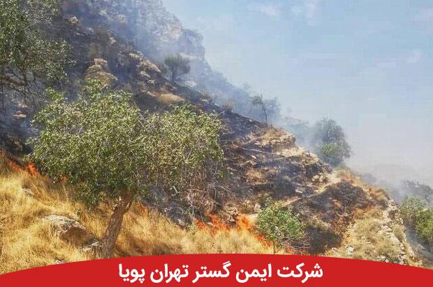 آتشسوزی در ارتفاعات دشتستان ادامه دارد | اعزام بالگرد به منطقه